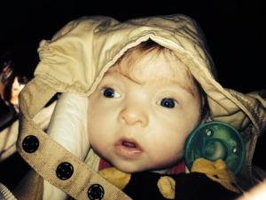 Hazel - 5 months old